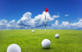 Golfspielvariante WOLF